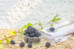 Blackberry en groene bladeren met natuurlijke achtergrond Royalty-vrije Stock Fotografie