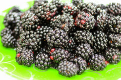 Blackberry. Fresh blackberry on the green plate royalty free stock photography