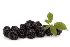 Blackberry Fruit Royalty Free Stock Photography