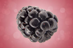 Blackberry fruit. Close-up of a blackberry fruit Royalty Free Stock Images