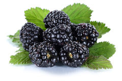 Blackberry fruit blackberries berry berries fruits isolated on w Stock Photos