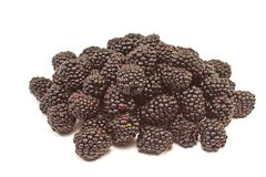 Blackberry fruit pile isolated on white background Stock Photography