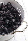 Blackberry fruit in strainer Royalty Free Stock Images