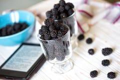 Blackberry fruit Stock Photography