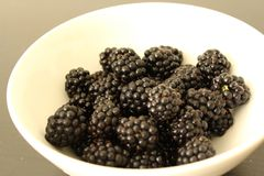 Blackberry, fruit, verse bes, Royalty-vrije Stock Foto's