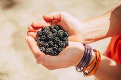 Blackberry in hands. Blackberry in womans hands with bracelet Stock Photo