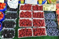 Blackberry, Himbeere und Blaubeere Stockbilder