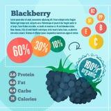 Blackberry i witamin infographics w mieszkaniu projektuje ilustracja wektor