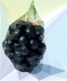 Blackberry illustration Stock Photography