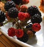 Blackberry. Image of blackberry ona table Stock Photo