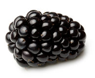 Blackberry  isolated Stock Photo