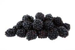 Blackberry isolated on white background Royalty Free Stock Photos