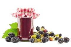 Blackberry-jam stock afbeelding