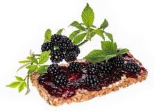 Blackberry Jam on a bread against white Stock Images