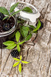 Blackberry Jam with fresh fruits Stock Photography