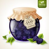 Blackberry jam glass. Natural organic homemade forest blackberry jam in glass jar with tag and paper cover vector illustration vector illustration