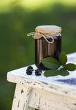 Blackberry jam Royalty Free Stock Photos