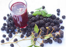 Blackberry juice Royalty Free Stock Photos