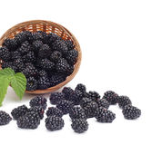 Blackberry with leaf in basket Stock Image