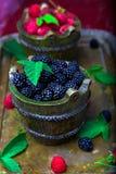 Blackberry with leaf in a basket on vintage metal tray. Top view.  Close up. Blackberry with leaf in a basket on vintage metal tray. Top view.  Close up Stock Images
