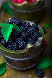 Blackberry with leaf in a basket on vintage metal tray. Top view.  Close up. Blackberry with leaf in a basket on vintage metal tray. Top view.  Close up Royalty Free Stock Photos