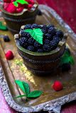 Blackberry with leaf in a basket on vintage metal tray. Top view.  Close up. Blackberry with leaf in a basket on vintage metal tray. Top view.  Close up Royalty Free Stock Images