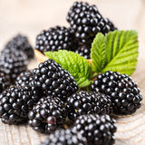 Blackberry with leaves Royalty Free Stock Images