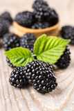 Blackberry with leaves Royalty Free Stock Photo