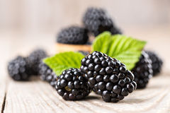 Blackberry with leaves Royalty Free Stock Photos