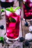 Blackberry lemonad med limefrukt och mintkaramellen arkivbilder