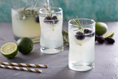 Blackberry lime and rosemary lemonade Stock Images