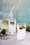 Blackberry lime and rosemary lemonade Royalty Free Stock Images