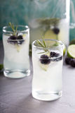 Blackberry lime and rosemary lemonade Royalty Free Stock Photos