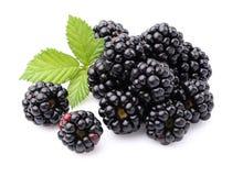 Blackberry met bladeren stock afbeeldingen