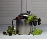 Blackberry in a metal mug Stock Image