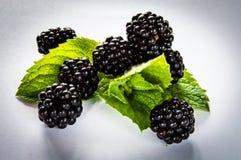 Blackberry & mint 8. Blackberry and mint background Stock Photos