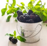 blackberry mint sunshine berry bowl wood background macro spring fresh close up rustic village royalty free stock photography
