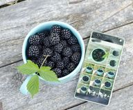 Blackberry and mobile phone Royalty Free Stock Image