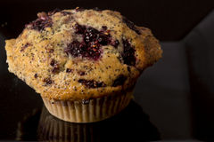 Blackberry Muffin Royalty Free Stock Image
