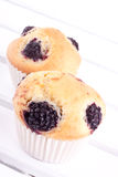 Blackberry muffins Stock Images