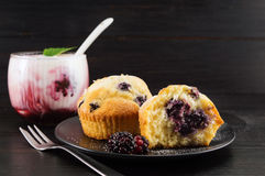 blackberry muffins covered with sugar powder Stock Image