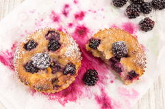 Blackberry-muffins op een plaat Royalty-vrije Stock Fotografie