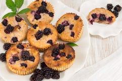 Blackberry-muffins op een plaat Royalty-vrije Stock Foto's