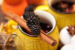 Blackberry na cynamonowym kiju Fotografia Royalty Free