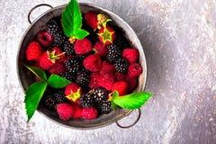 Blackberry och hallonet i en metall bowlar på grå träbakgrund Top beskådar Royaltyfri Foto