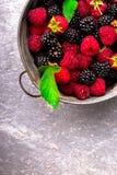Blackberry och hallonet i en metall bowlar på grå träbakgrund Top beskådar Royaltyfria Bilder