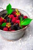 Blackberry och hallonet i en metall bowlar på röd träbakgrund Royaltyfria Bilder