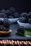 Blackberry på stenbräde Royaltyfria Bilder