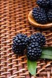 Blackberry på vide- bakgrund Royaltyfria Bilder