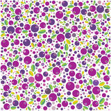 Blackberry pattern. Illustration. EPS 10.0. RGB. Illustration can be used as template for food labels or as background for different issues Stock Image